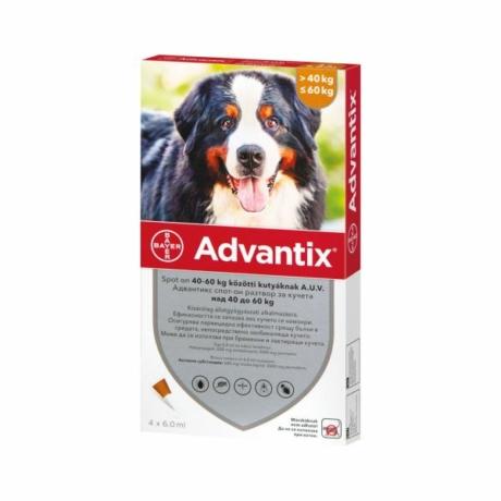 Advantix spot on 40-60kg kutya 1pipetta